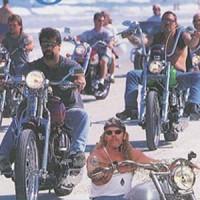 American Motorcycle DVD