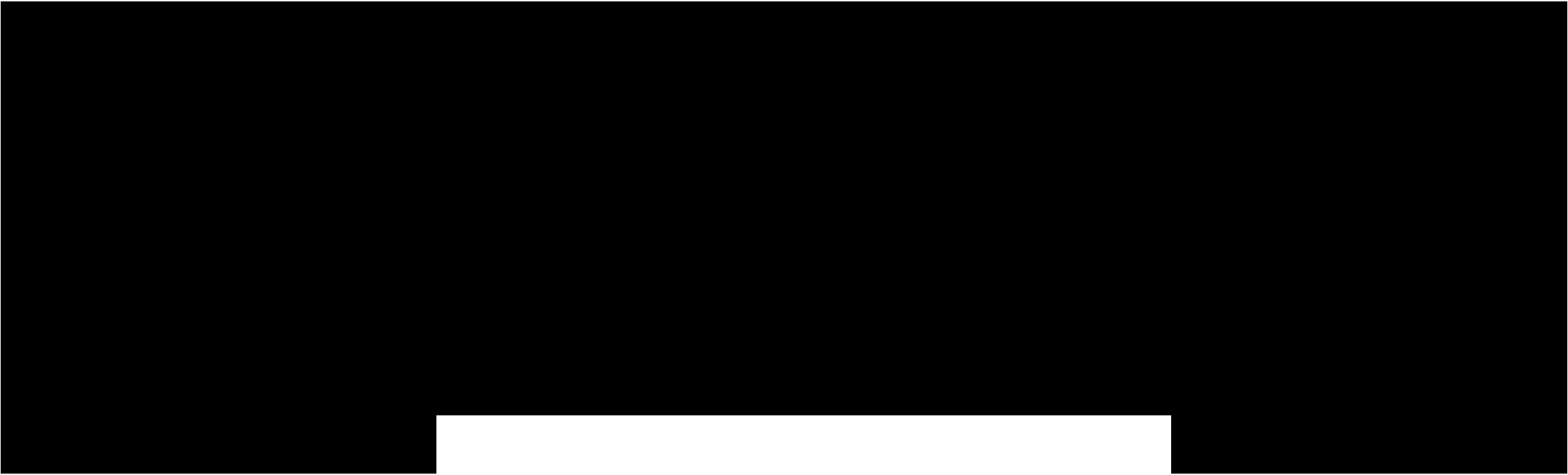 NORTON_Logo_Black